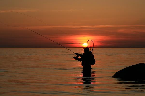 Débuter dans la pêche