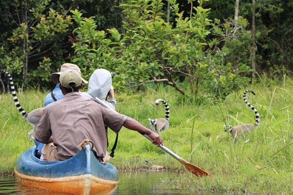 Decouverte de Madagascar